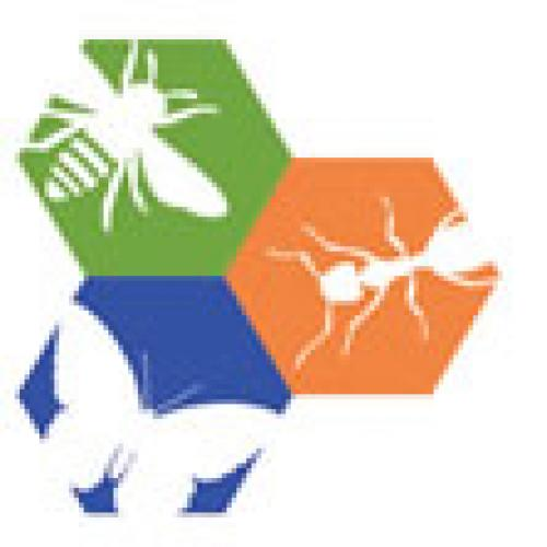 Philadelphia Insectarium and Butterfly Pavilio logo