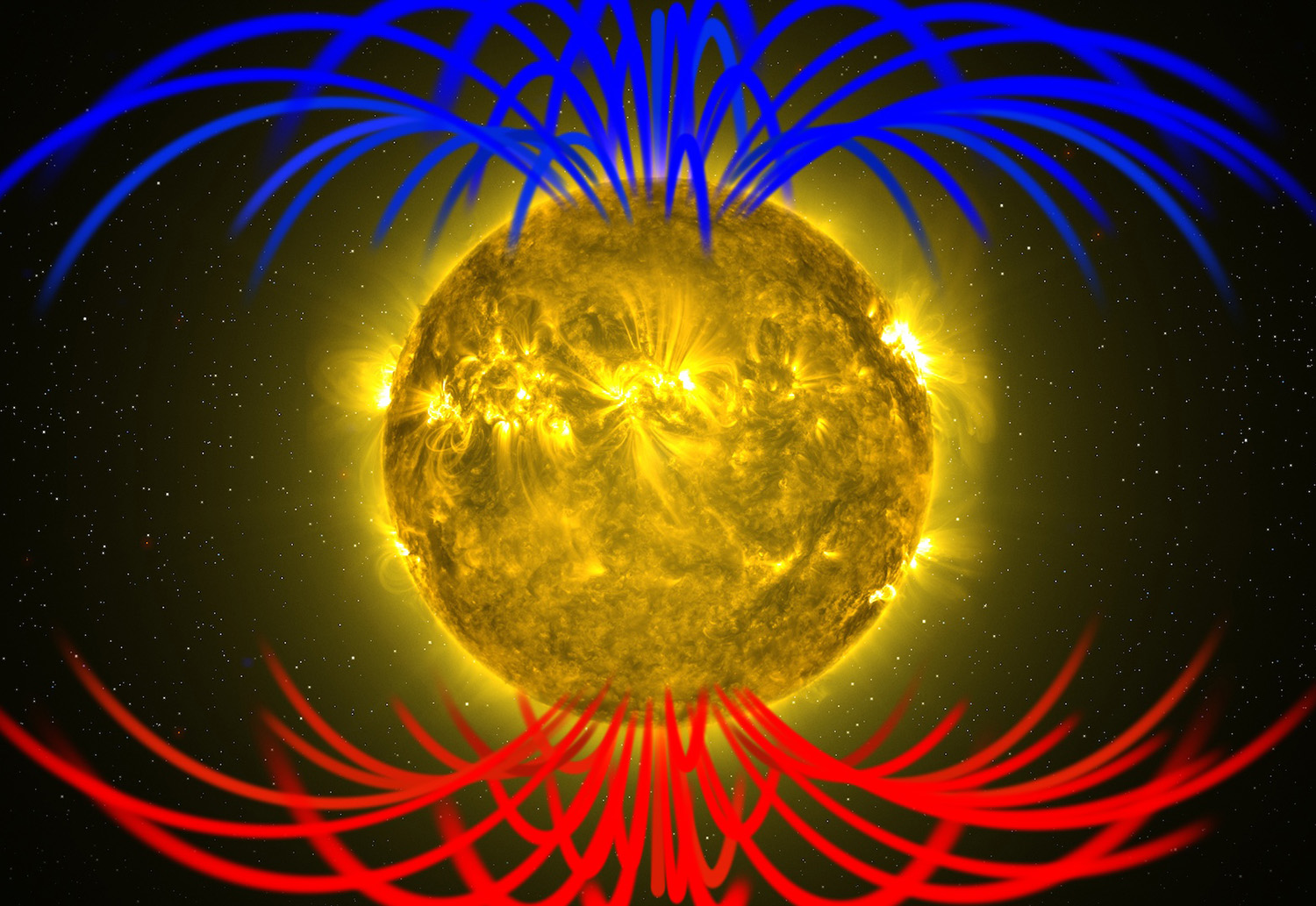 Image shows magnetic fields radiating from the sun's poles.