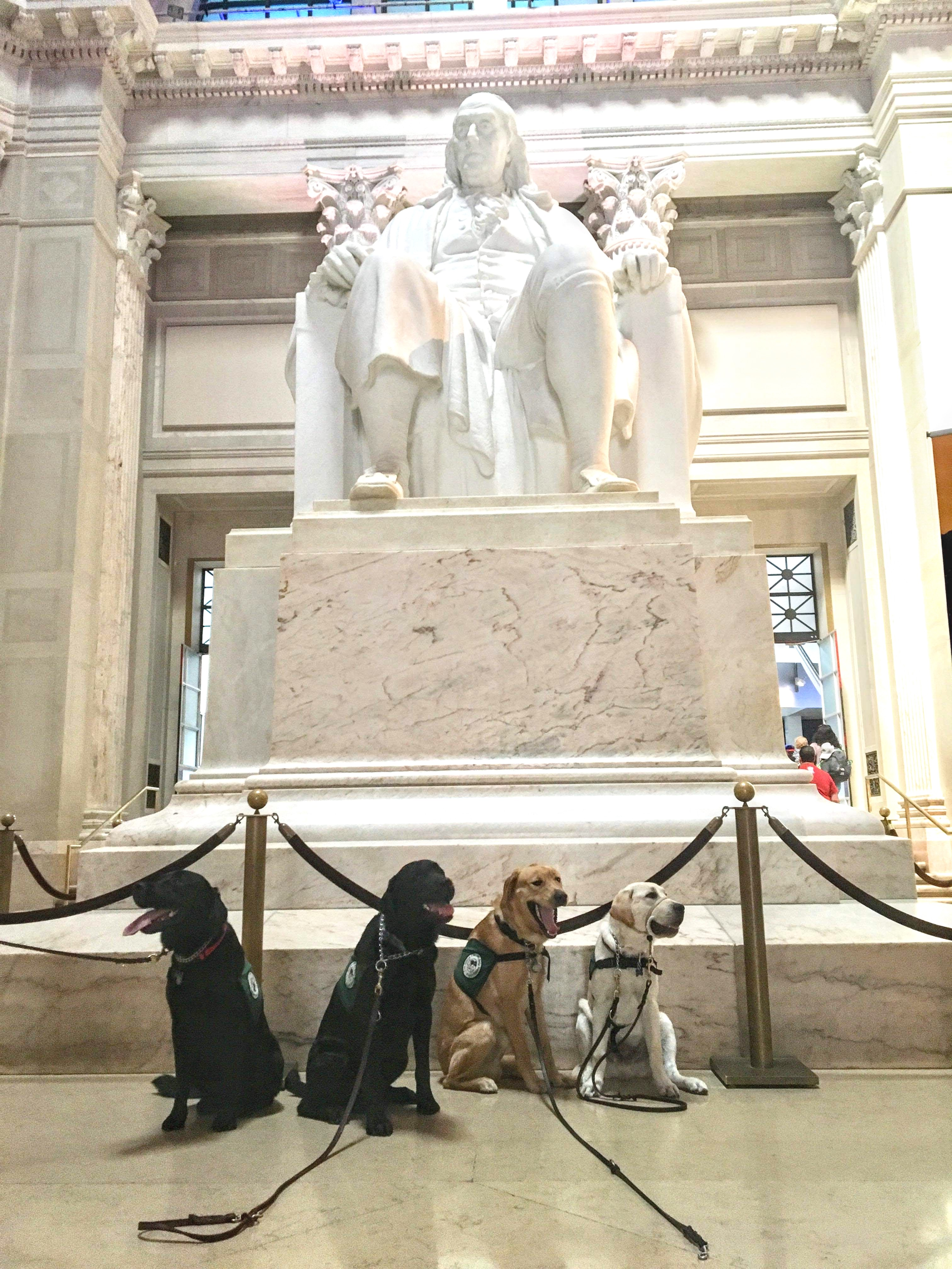Dogs in front of the Franklin memorial