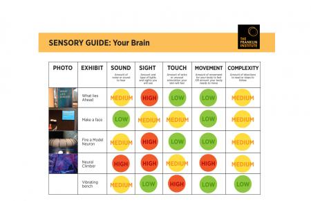 Sensory-Friendly Guide to the Your Brain exhibit that includes information about sound, sight, touch, and movement