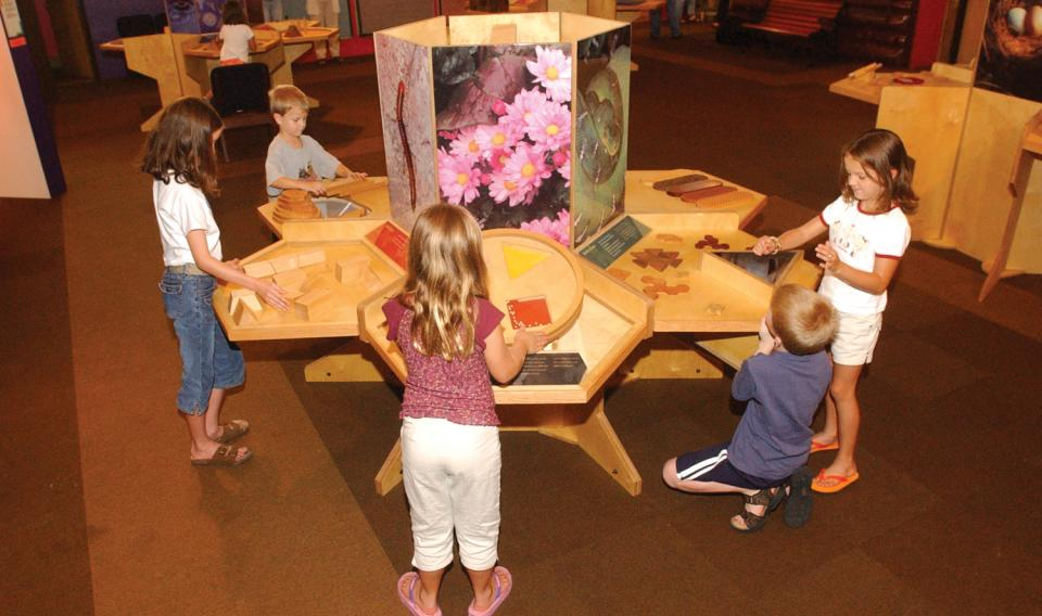 Children learning at the Nature's Numbers traveling exhibit at the Franklin Institute.