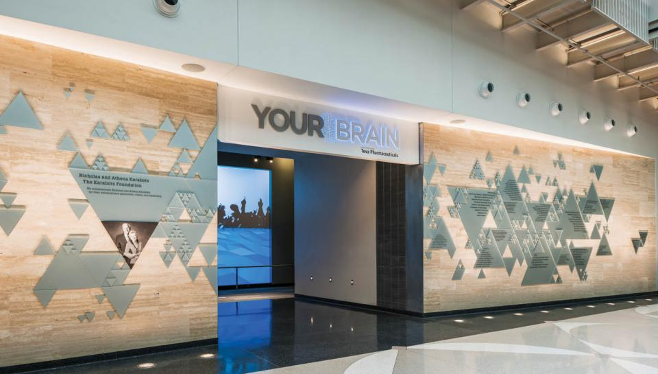 Your Brain Event Space