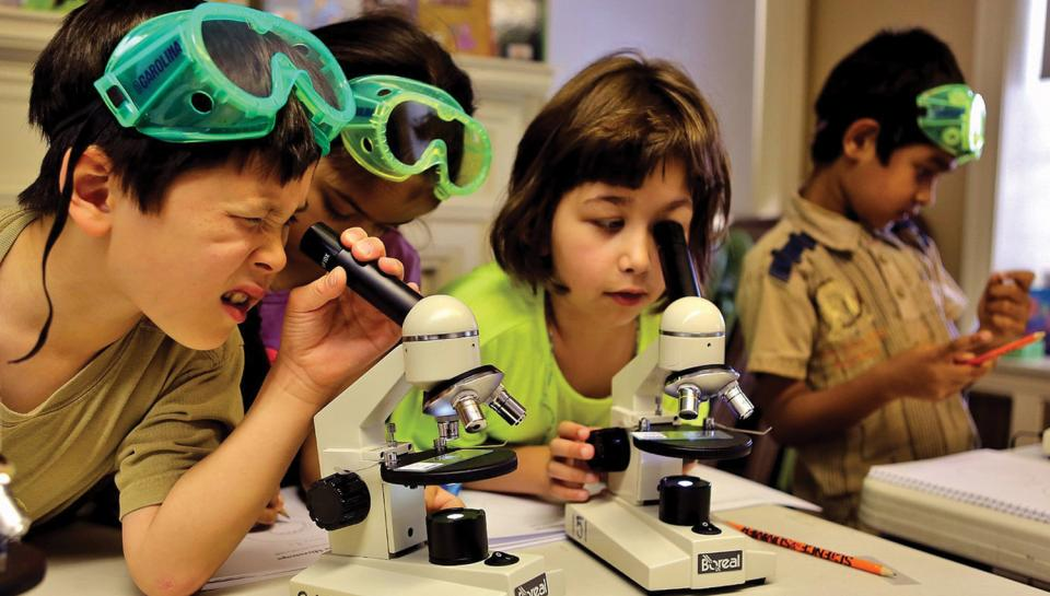 Kids having fun with microscopes