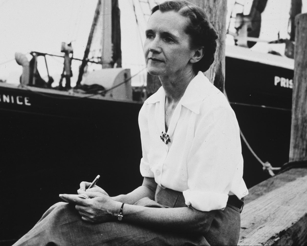 "Photo of Rachel Carson, marine biologist, environmentalist and author of ""Silent Spring."""