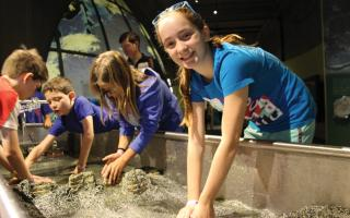 Children playing with the stream table interactive in the Changing Earth exhibit at The Franklin Institute.