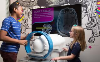 Children explore the brain scan interactive in the Your Brain exhibit at The Franklin Institute.