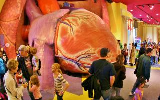 A wide shot of The Giant Heart exhibit filled with visitors.