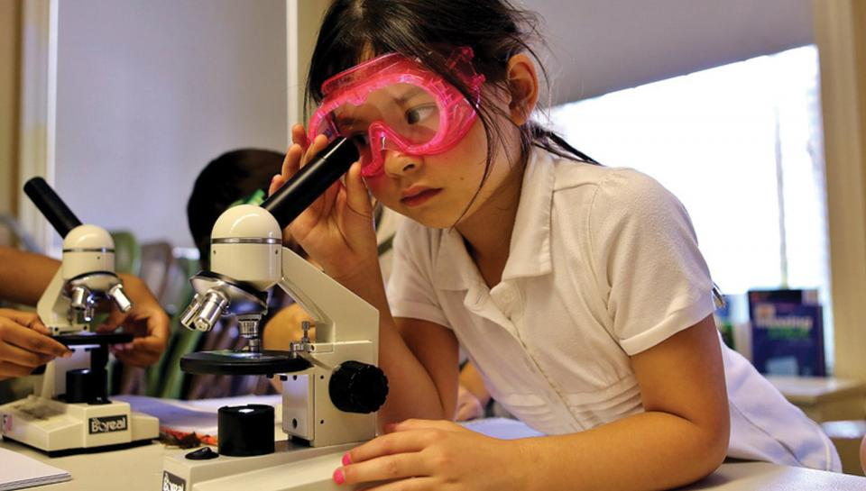 A young girl learns to use a microscope at GSK's Science in the Summer bioscience program.