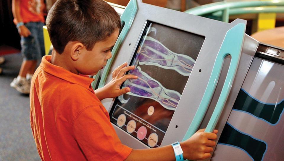 A young boy exploring a scan of the human body in The Giant Heart exhibit.